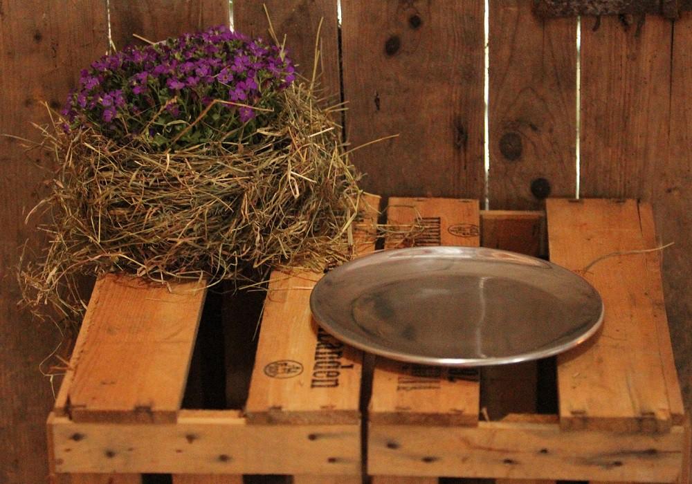deko teller teller silber 25cm deko sch nes f r zuhause deko schalen teller. Black Bedroom Furniture Sets. Home Design Ideas